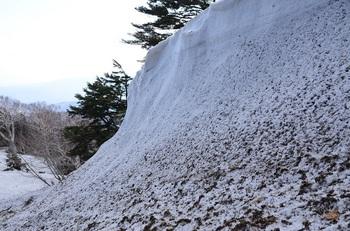西村山雪庇