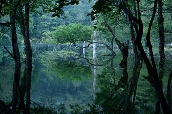 神秘の湖⑸