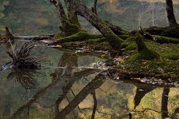神秘の湖④