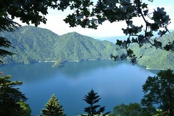 白ヤシオと中禅寺湖