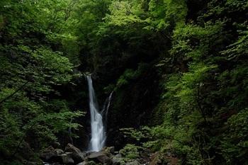 新緑と裏見の滝